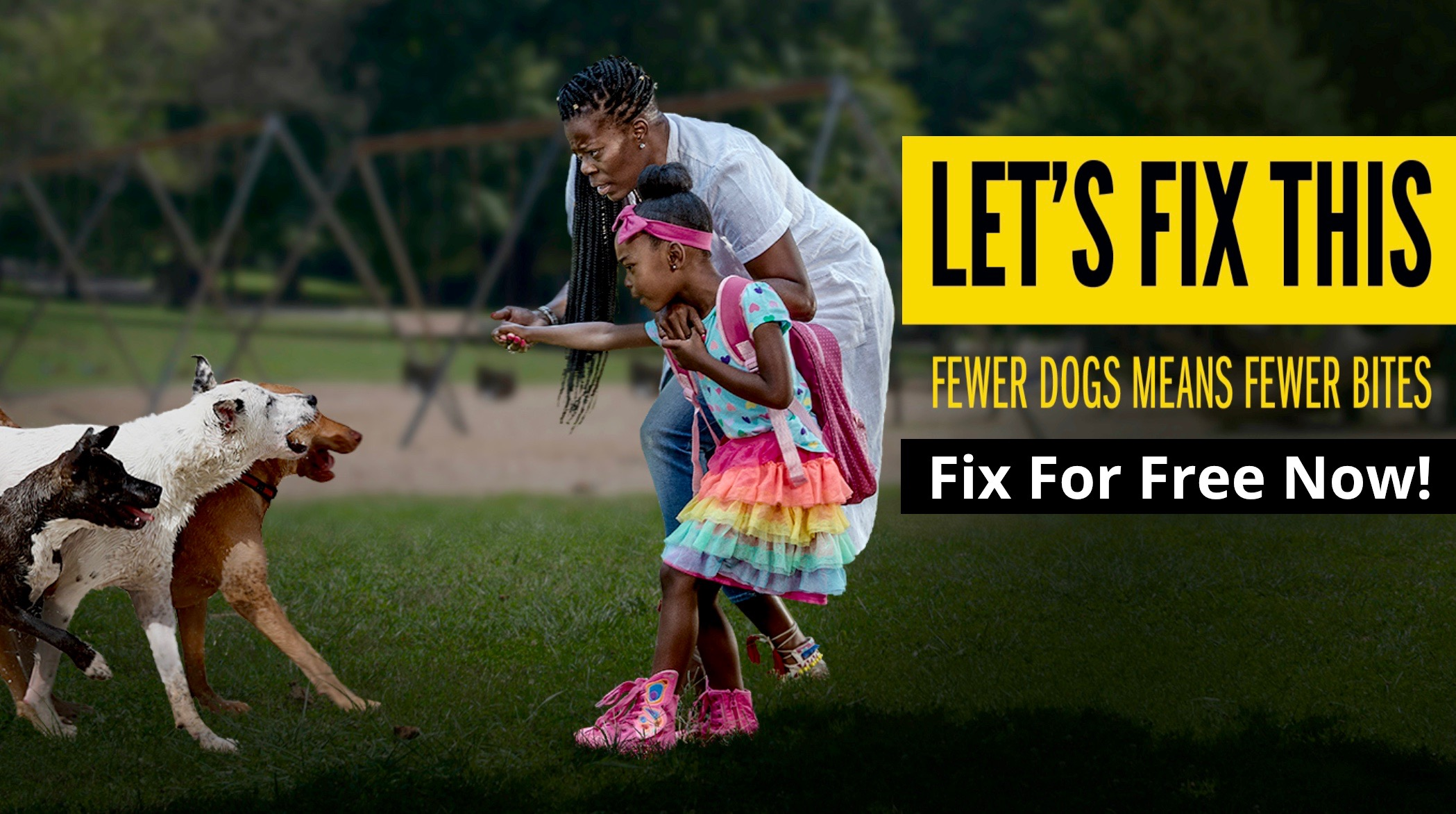 Fewer Dogs Means Fewer Bits