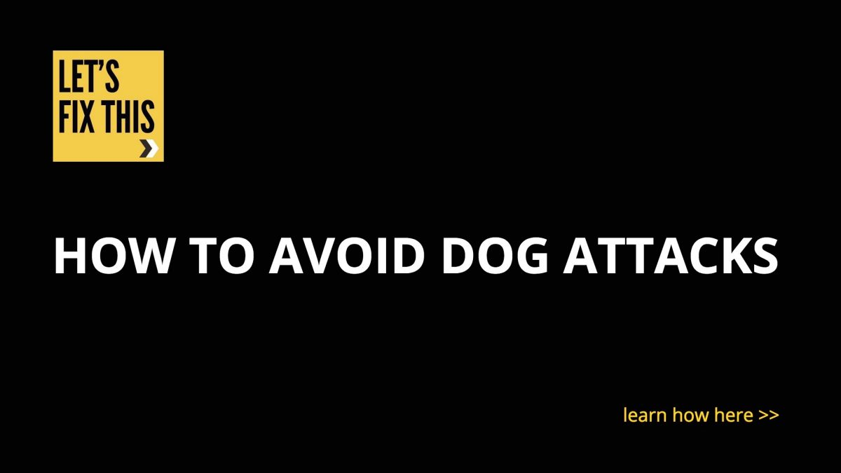 how to avoid dog attacks